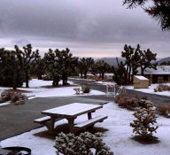 One morning we awoke to snow falling in our campground.