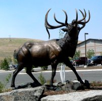 The statue at the entry to the Rocky Mountain Elk Foundation.