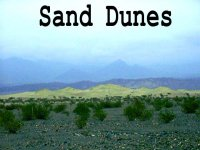 th-SandDunes.jpg (8397 bytes)