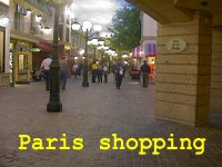 th-ParisShopping.jpg (9757 bytes)