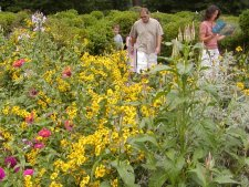 The gardens of Mt. Vernon are open to self tours. Ckick here for another view of the gardens.