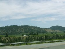There are miles and miles of fruit orchards along the road to Leavenworth.