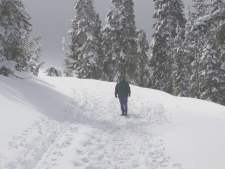 The park service maintains cross country ski trails as well as down-hill.