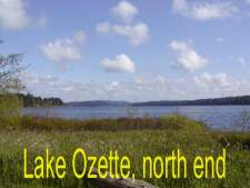 Lake Ozzette, north end