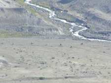 The lower valley, below the volcano. The great flood created by the melting snow and ice when the mountain blew up washed the rock there. Notice the scattered Elk in the valley.